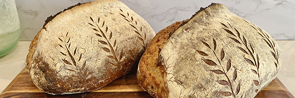 Artisanal sourdough loaves recipe