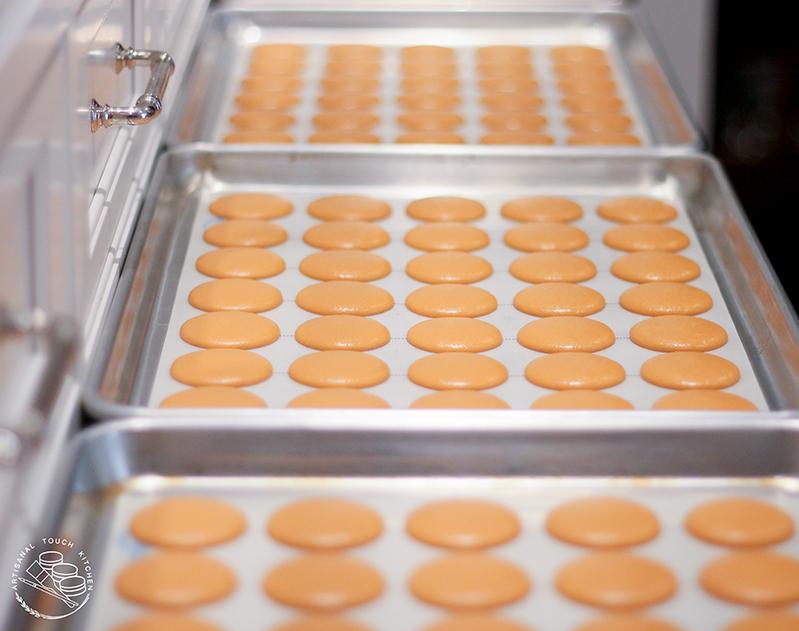 pumpkin cheesecake spice pie macarons